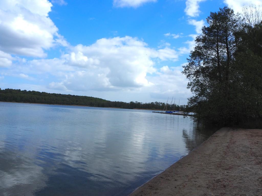 Ufer am Kellersee