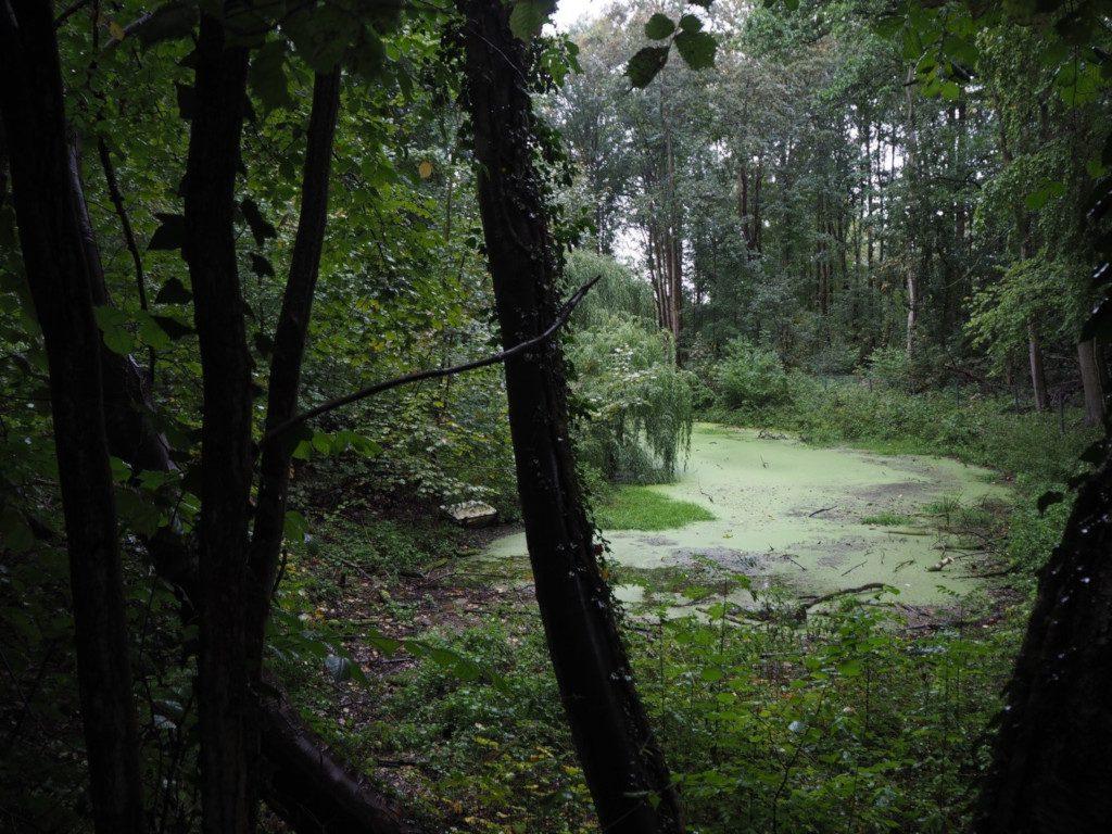 Park am Hängebargshorst