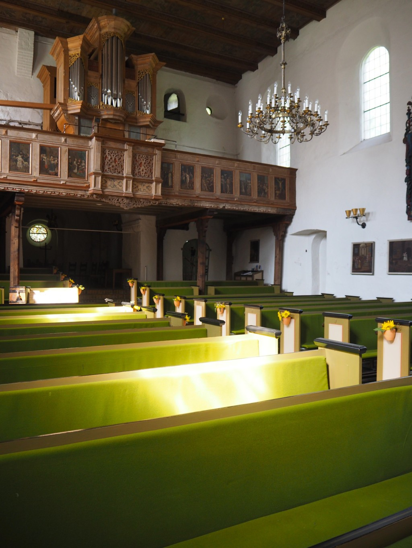 Kirche in Neukirchen - Orgel