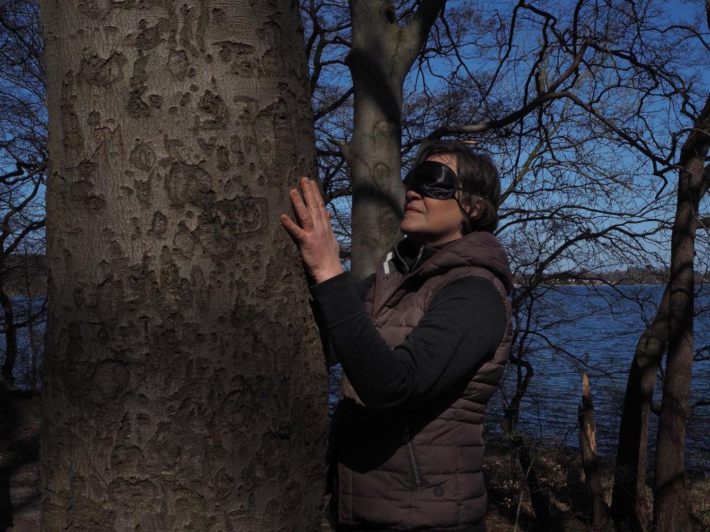 Waldbaden Baum