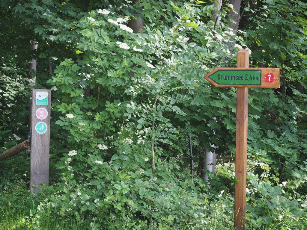Gegenüber der Landesfinanzschule biegt man Richtung Krummsee ab