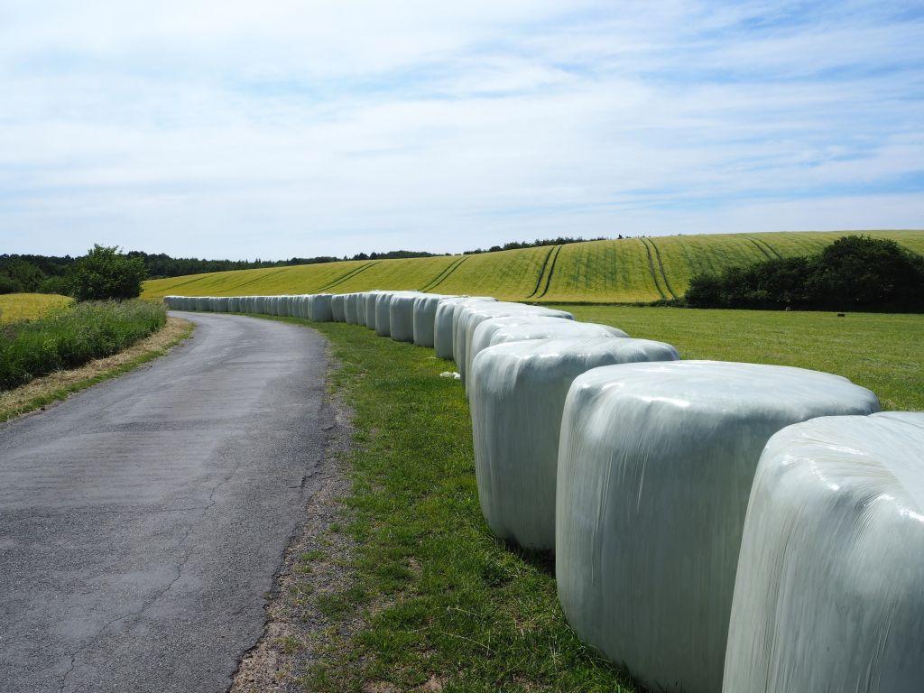 Auf dem Bruhnskoppeler Weg geht es weiter Richtung Malkwitz