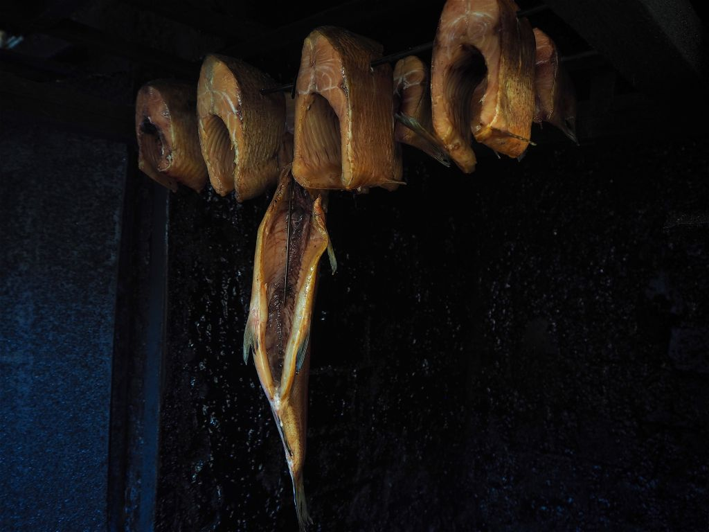 Diekseefischerei - Delikate Maräne