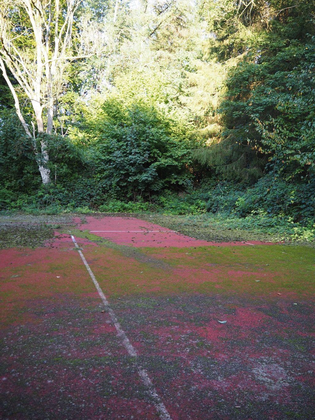 Hängebargshorst_Es war einmal ein Tennisplatz