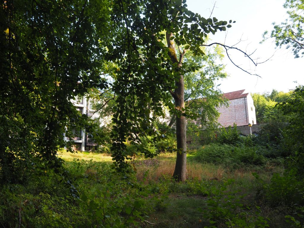 Hängebargshorst_Das verlassene Klinik-Gebäude