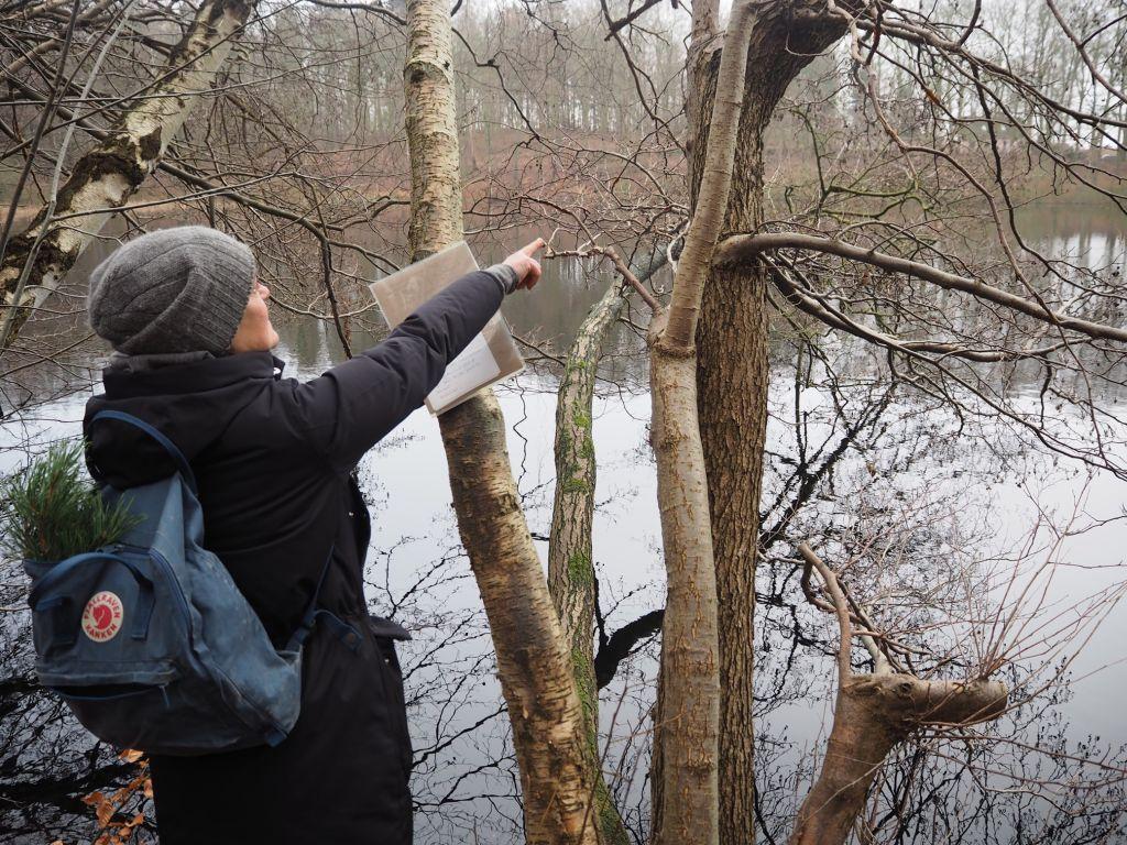 Im Winterwald sollte man genau hingucken