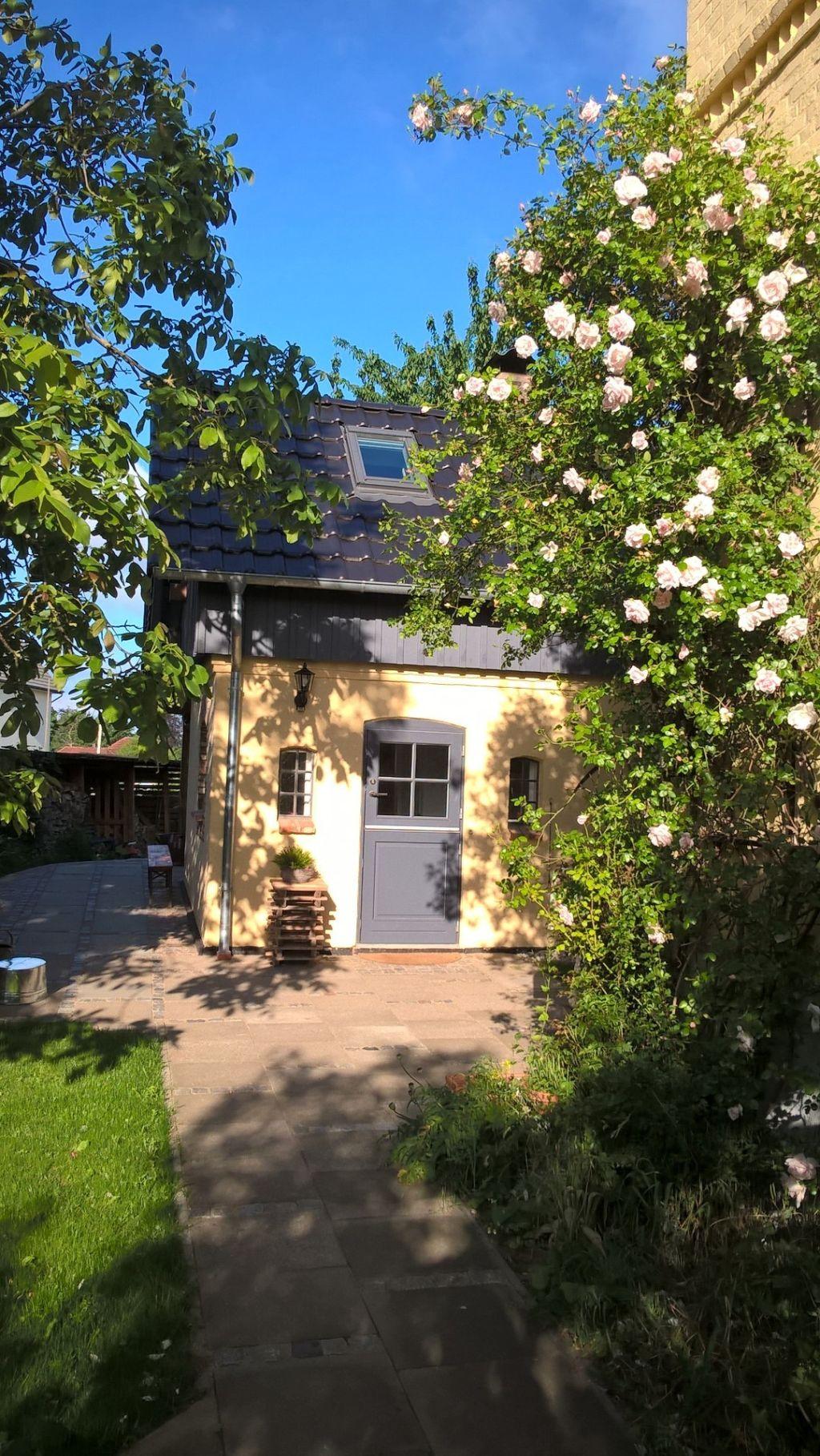 Opulente Blüten im Garten der Ferienwohnung