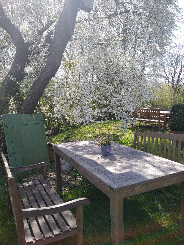 Das Feldcafé auf dem Ingenhof hat wieder geöffnet