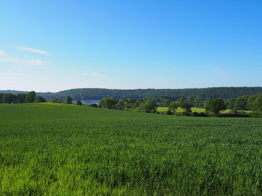 Ausblick zwischen Malente und Timmdorf