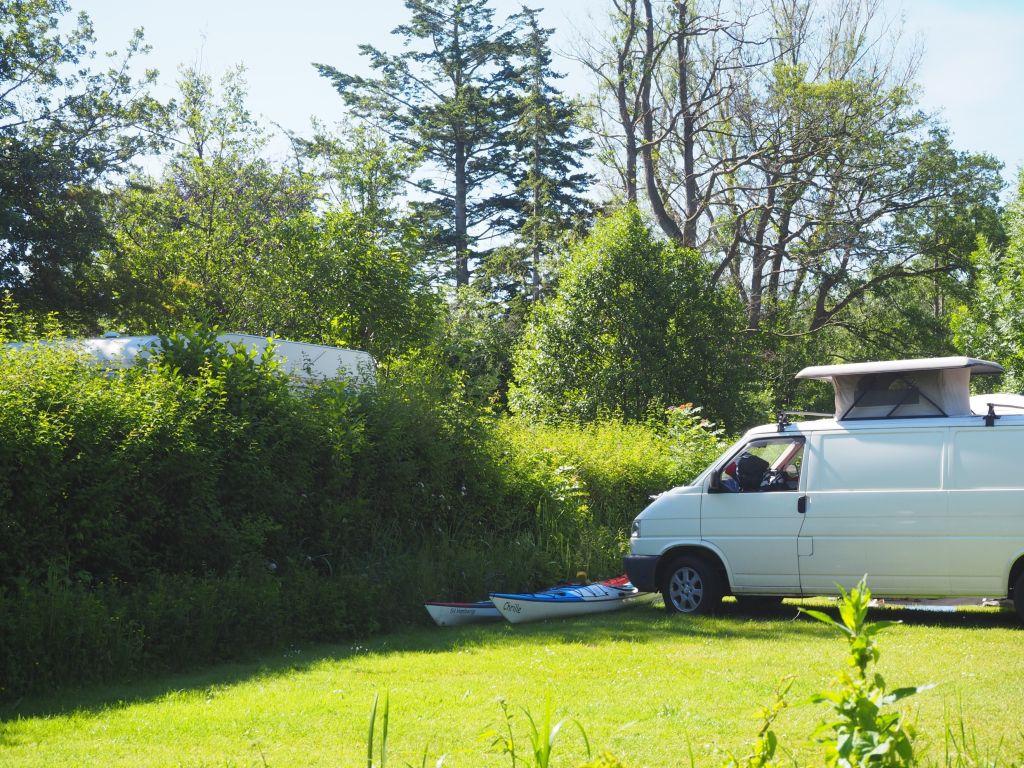 Camping fast wie in wilder Natur, aber mit Strom