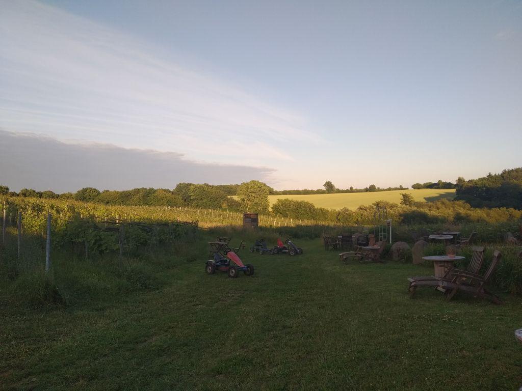 Abendstimmung mit Blick über die Hügel der Holsteinischen Schweiz