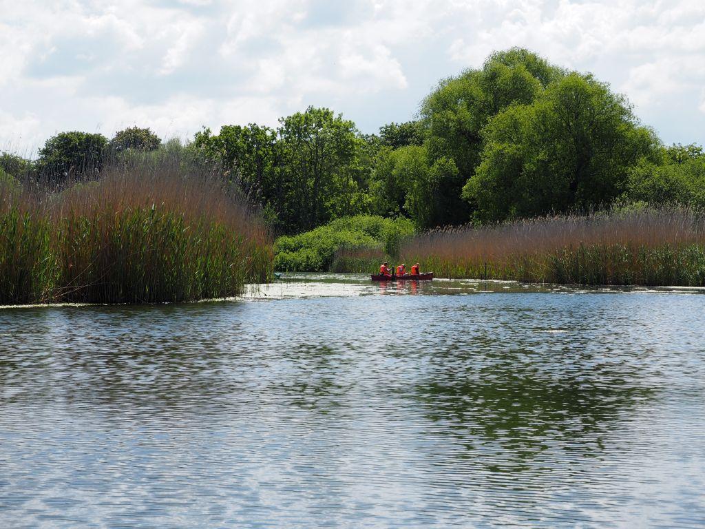 Die Schwentine verbindet Kellersee und Dieksee